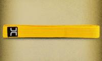 striped-belt-yellow-2