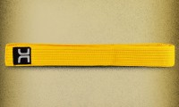 striped-belt-yellow-2